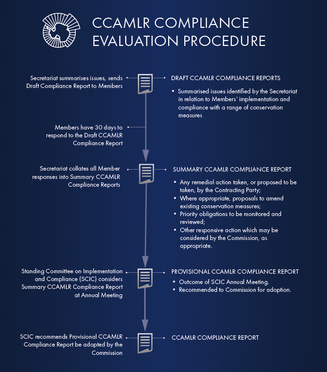 CCEP annual process flowchart